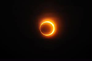 Solar_annular_eclipse_January15_2010_in_JinanRepublic_of_China.JPG